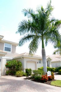 ft-myers-landscaping