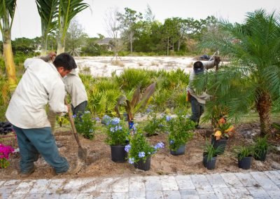 ft-myers-landscaping (54 of 57)