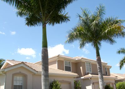 landscaping-fort-myers10