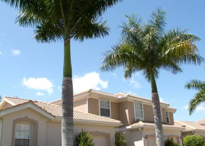 landscaping-fort-myers11