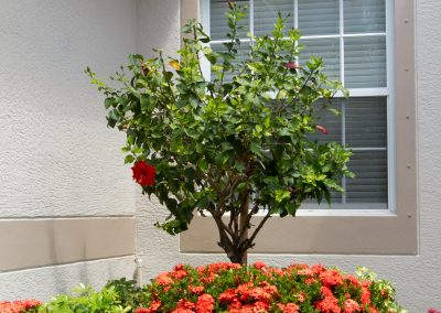 landscaping-fort-myers18