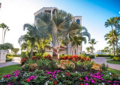 landscaping-fort-myers27