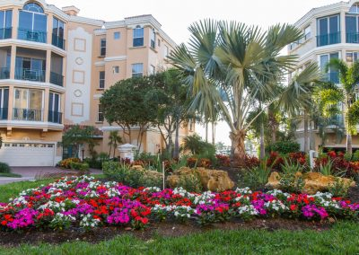 landscaping-fort-myers29