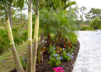 landscaping-fort-myers43